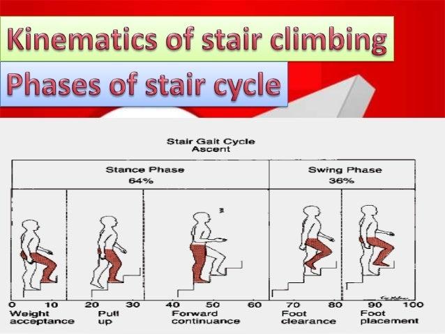 Biomechanics Of Stair Climbing