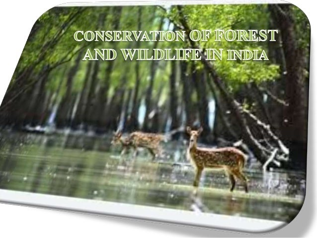 FOREST AND WILDLIFE CONSERVATION PDF DOWNLOAD
