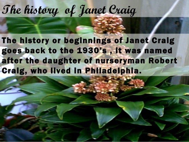 The history of Janet Craig The history or beginnings of Janet Craig goes back to the 1930's , it was named after the daugh...