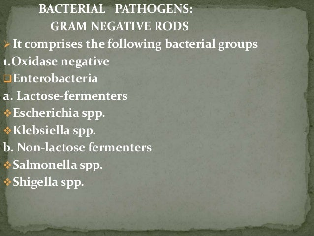 BACTERIAL PATHOGENS: GRAM NEGATIVE RODS It comprises the following bacterial groups 1.Oxidase negative Enterobacteria a....