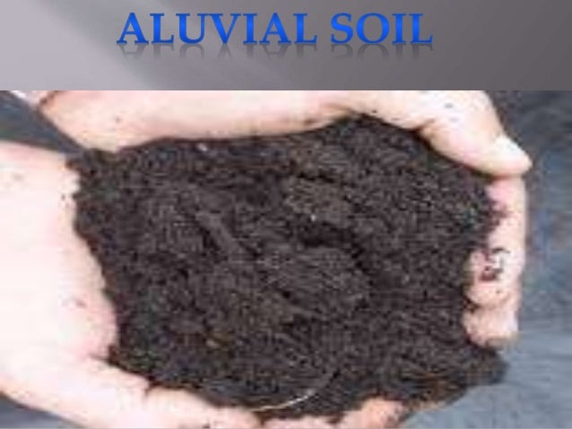 Types of soil and water absorption for Soil and its types