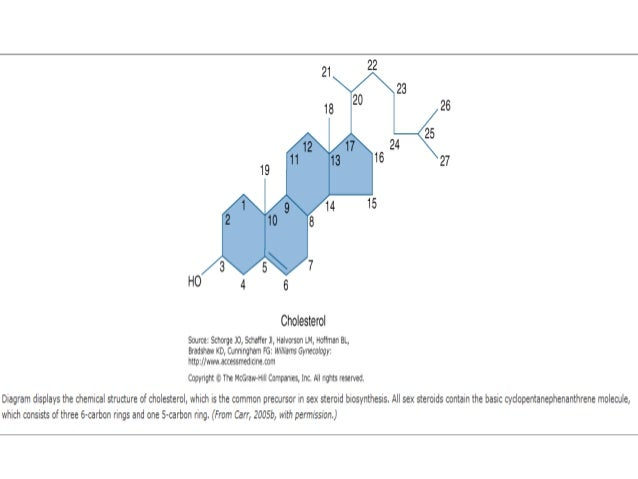 ovarian steroidogenesis pdf