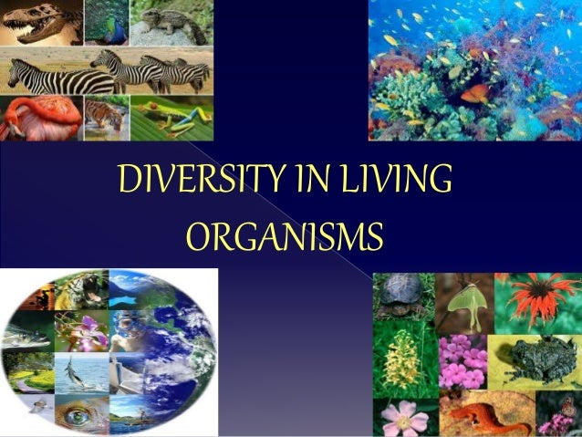 Diversity In Living Organisms