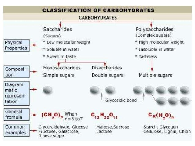 Role of carbohydrate in fish feed for Carbs in fish