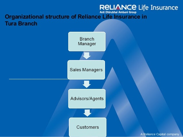 reliance communication organisational structure Reliance communications ltd, ananil dhirubhai reliance india mobile has  external assessment of organisation chart- 2 18.