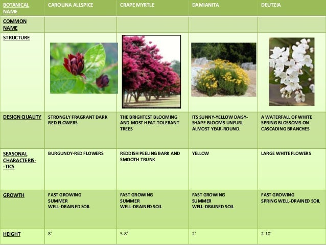 Landscape types plants tree shrubs 7 botanical name sciox Images