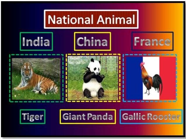 Comparative Study Of National Symbols Of India China France