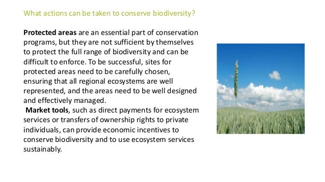 Informing all of society about the benefits of conserving biodiversity, and explicitly considering trade-offs between diff...