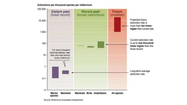 What factors lead to biodiversity loss?