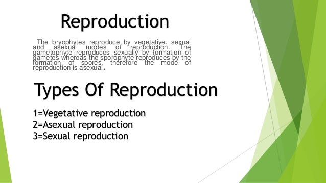 Bryophytes asexual reproduction definition