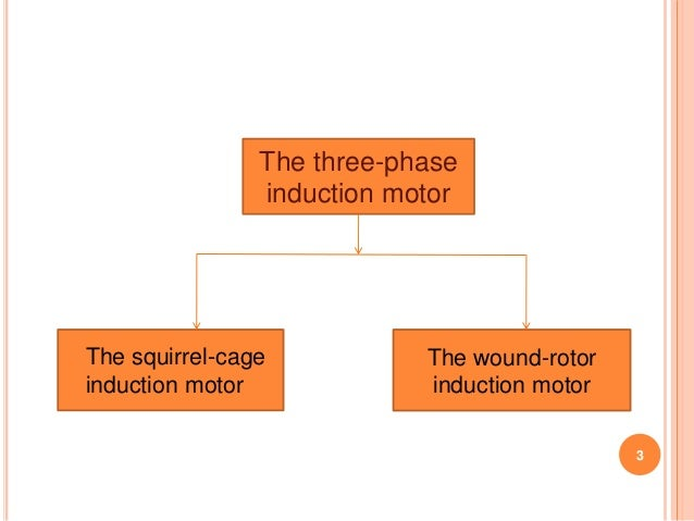3 Phase Squirrel Cage Induction Motor Ppt on squirrel cage motor theory