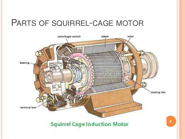 T 48364491 on split phase motor torque