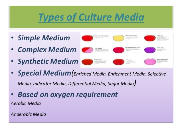 media and culture Understanding media and culture by jack lule was written to squarely emphasize the role of media technology in strategic communications.