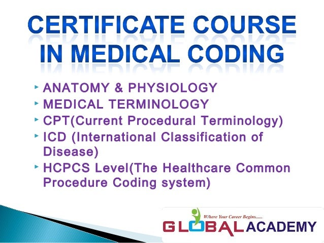 medical coding for health professionals coder resume objective no experience