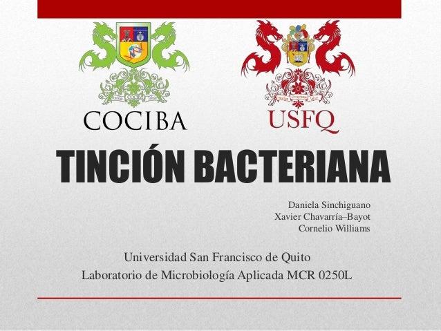 TINCIÓN BACTERIANA Daniela Sinchiguano Xavier Chavarría–Bayot Cornelio Williams Universidad San Francisco de Quito Laborat...