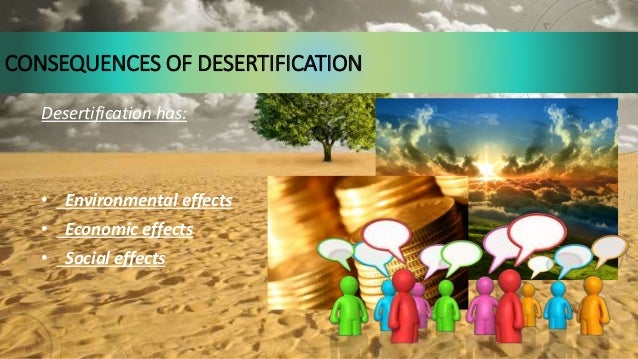 effects of desertification The effects of drought are widespread and have devastating effects on the environment and the society as a whole water use is part and parcel of almost every human activity as well as the life of plants and animals  besides, fertile lands are lost as a result of drought, and in consequence, desertification sets in desertification is whereby the.
