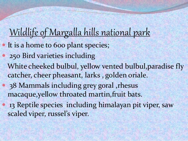 Wildlife of Margalla hills national park  It is a home to 600 plant species;  250 Bird varieties including White cheeked...