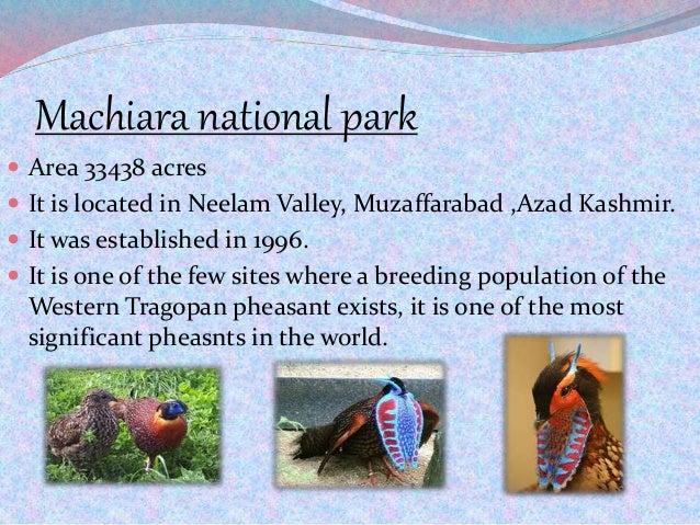 Machiara national park  Area 33438 acres  It is located in Neelam Valley, Muzaffarabad ,Azad Kashmir.  It was establish...