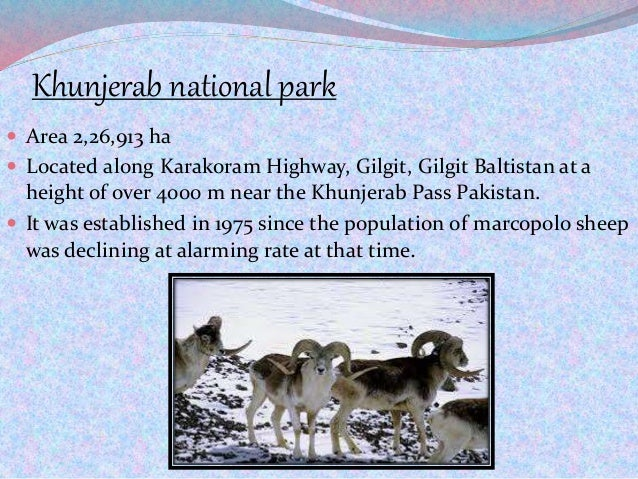 Khunjerab national park  Area 2,26,913 ha  Located along Karakoram Highway, Gilgit, Gilgit Baltistan at a height of over...