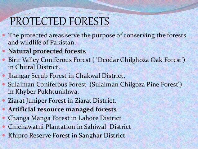 PROTECTED FORESTS  The protected areas serve the purpose of conserving the forests and wildlife of Pakistan.  Natural pr...