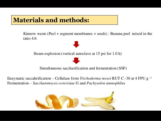 Bioethanol production from fruits and vegetable wastes