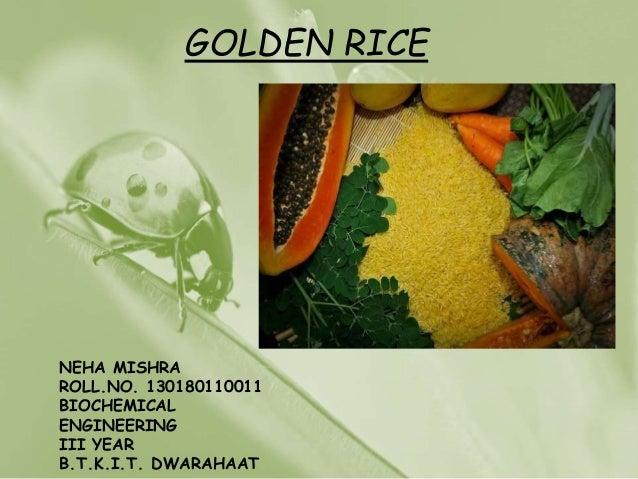 GOLDEN RICE NEHA MISHRA ROLL.NO. 130180110011 BIOCHEMICAL ENGINEERING III YEAR B.T.K.I.T. DWARAHAAT