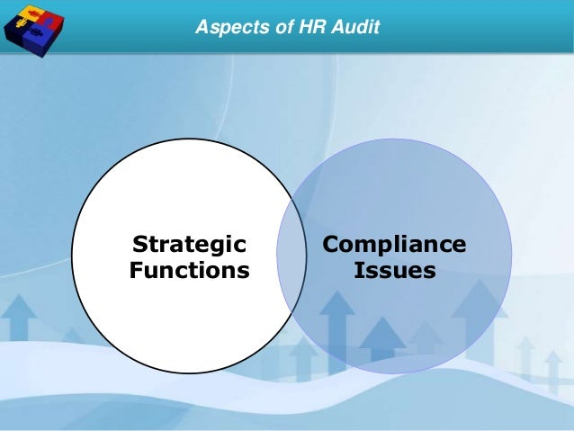 Strategic Functions Compliance Issues Aspects of HR Audit