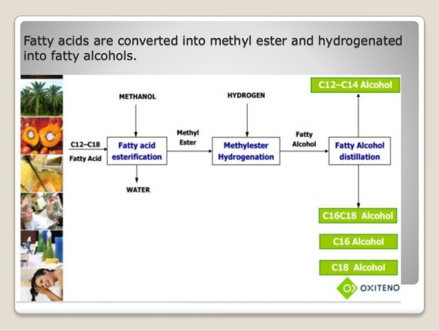 production of fatty alcohol from hydrogenation Supported copper or especially nickel catalysts are very important for hydrogenation of various organic compounds in the practice activity, selectivity and stability can be greatly improved using co-catalysts: eg chromium compounds with cu (adkins catalyst for fatty alcohol production) or molybdenum compounds with ni (for.