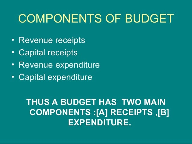 presentation1 ppt on budget
