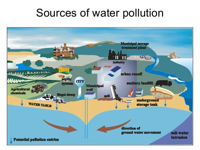 Wiring And Diagram  Diagram Of Water Pollution