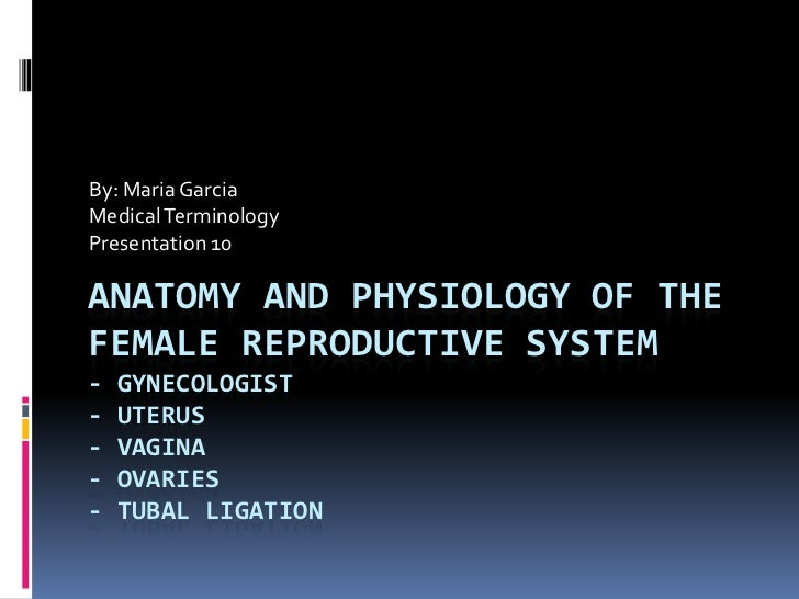 By: Maria Garcia<br />Medical Terminology<br />Presentation 10<br />Anatomy and Physiology of the Female Reproductive Syst...