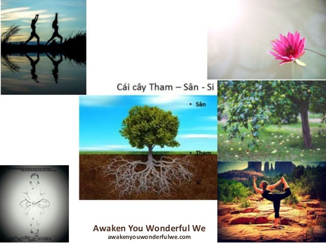 Awaken You Wonderful We Awakenyouwonderfulwe.com Love – Connection – Stimulation – and Abilities