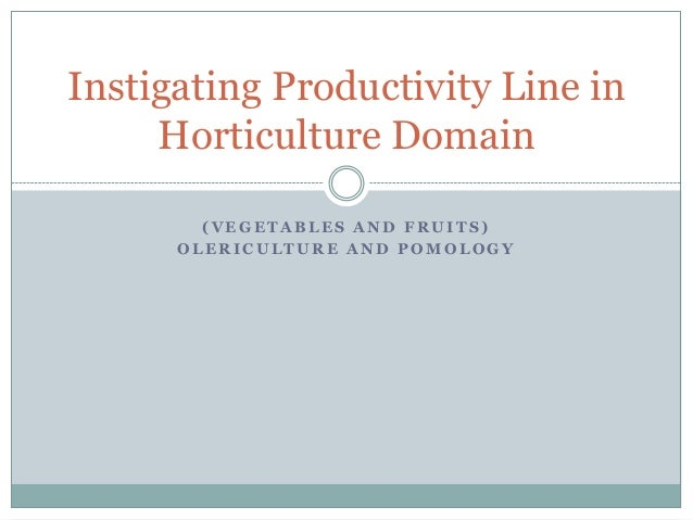Instigating Productivity Line in Horticulture Domain (VEGETABLES AND FRUITS) OLERICULTURE AND POMOLOGY