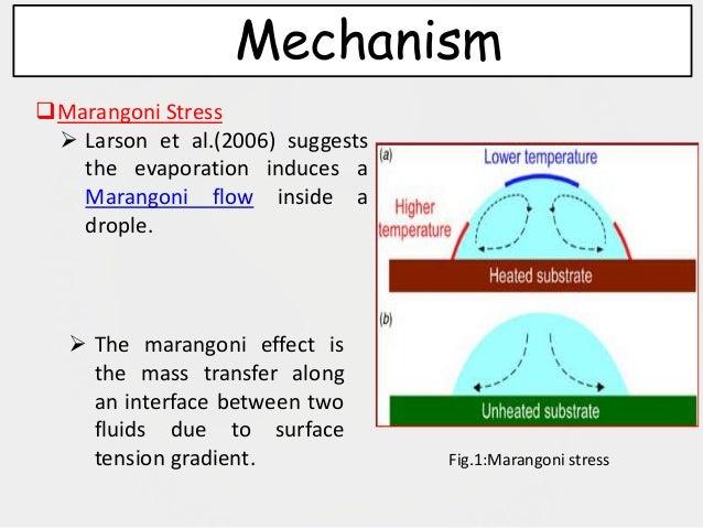 Marangoni Effect Reverses Coffee Ring Depositions