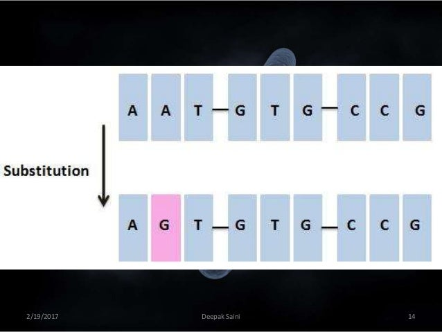 human genetics and population genetics
