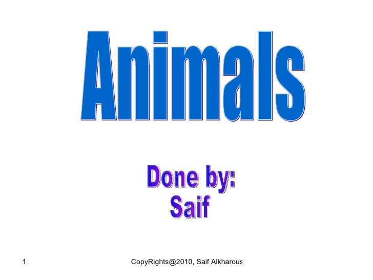 Animals Done by: Saif
