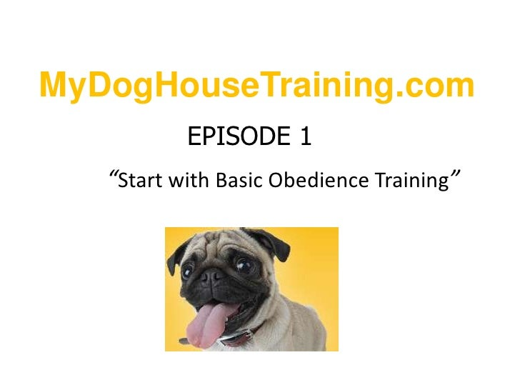 """MyDogHouseTraining.com<br />EPISODE 1""""Start with Basic Obedience Training""""<br />"""
