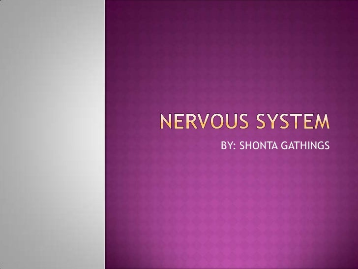 NERVOUS SYSTEM<br />BY: SHONTA GATHINGS<br />