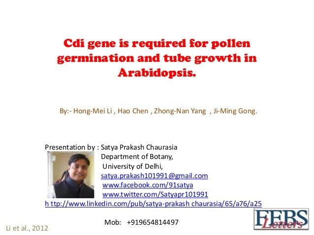Cdi gene is required for pollengermination and tube growth inArabidopsis.By:- Hong-Mei Li , Hao Chen , Zhong-Nan Yang , Ji...