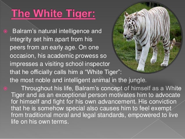 Use Of Symbol In The White Tiger Paper 13 New Literature
