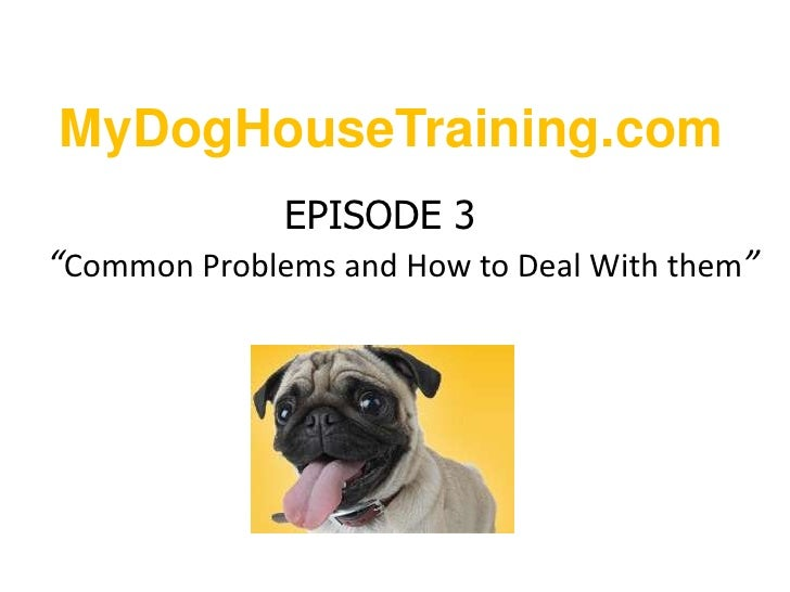 "MyDogHouseTraining.com<br />EPISODE 3""Common Problems and How to Deal With them""<br />"
