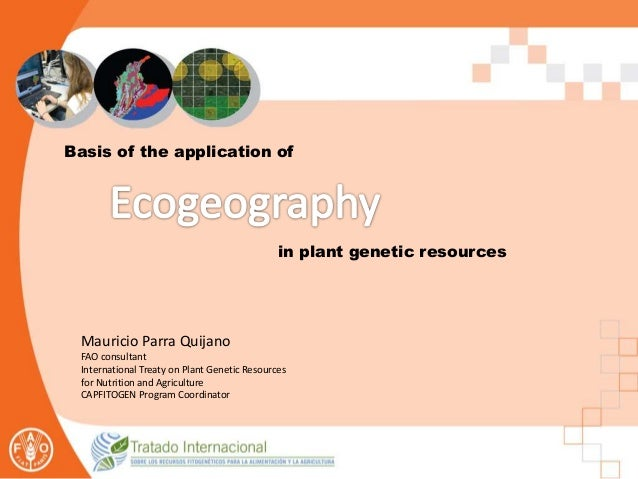 Basis of the application of in plant genetic resources Mauricio Parra Quijano FAO consultant International Treaty on Plant...