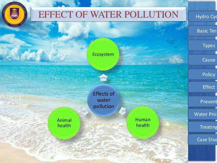 cause and effect of water pollution essay Water pollution has been seriously affecting the life of humans, plants as well as animals in the following lines, we have provided information on the causes and harmful effects of water pollution go through them and then decide on your course of action.