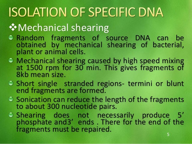 purification and identification of plasmid dna essay Analysing isolation of dna plasmid and agragose of gel electophoresis  the views of uk essays  without further purification however if the isolated plasmid dna.