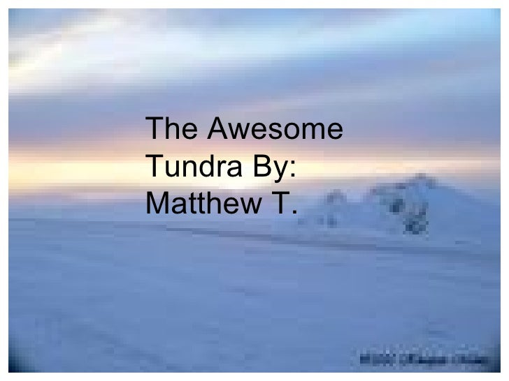 The Awesome Tundra By: Matthew T.