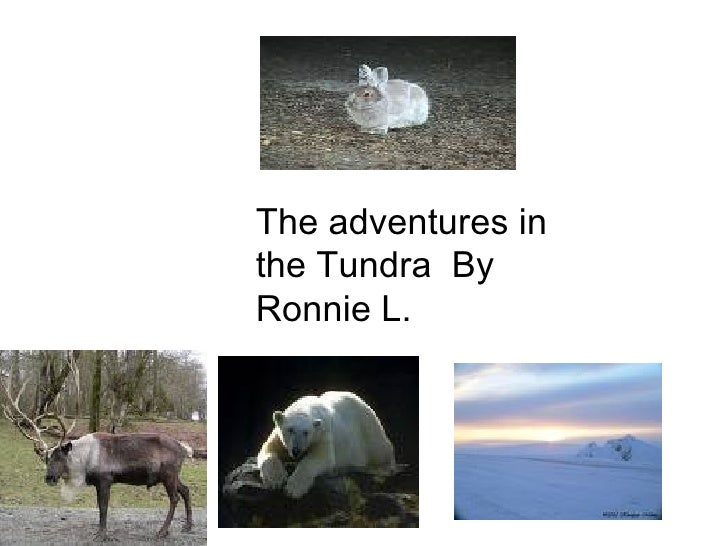 The adventures in the Tundra  By Ronnie L.