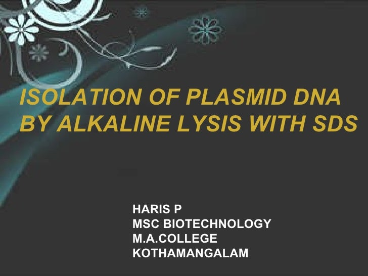 HARIS P MSC BIOTECHNOLOGY M.A.COLLEGE KOTHAMANGALAM ISOLATION OF PLASMID DNA BY ALKALINE LYSIS WITH SDS