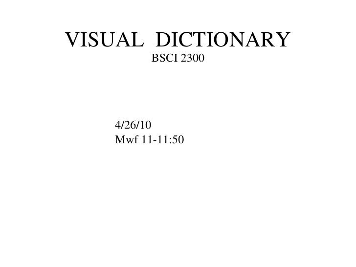 VISUAL  DICTIONARY BSCI 2300 4/26/10 Mwf 11-11:50