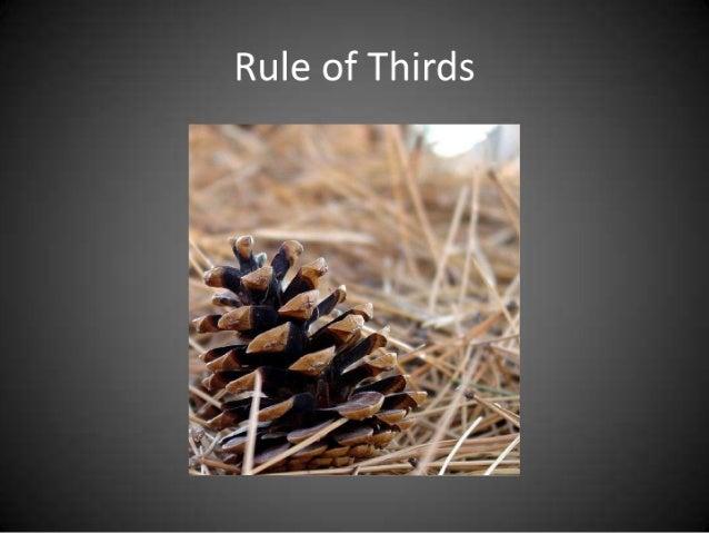 photo rules Slide 3
