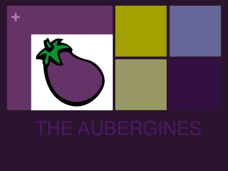 THE AUBERGINES<br />